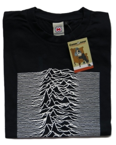 CasualCo Unknown Pleasures